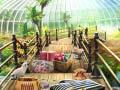 Oyunu Tropical World