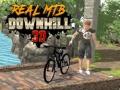 Игра Real MTB Downhill 3D