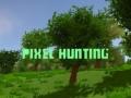 Ігра Pixel Hunting