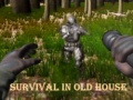 Ігра Survival In Old House