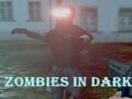 Ігра Zombies In Dark