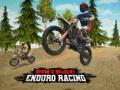 Игра Dirt Bike Enduro Racing