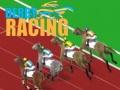 Ігра Derby Racing