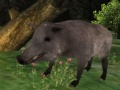 Ігра Wild boar Hunting