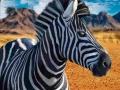 Ігра Zebra Hunter