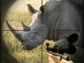 Игра Wild Rhino Hunter