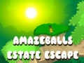 Ігра Amazeballs Estate Escape
