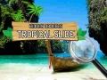 Spel Hidden Objects: Tropical Slide