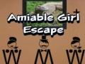 Игра Amiable Boy Escape