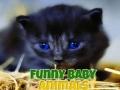Oyunu Funny Baby Animals