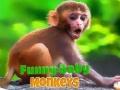 Ігра Funny Baby Monkey