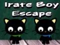 Игра Irate Boy Escape