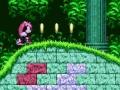 Joc Mighty & Ray In Sonic 2